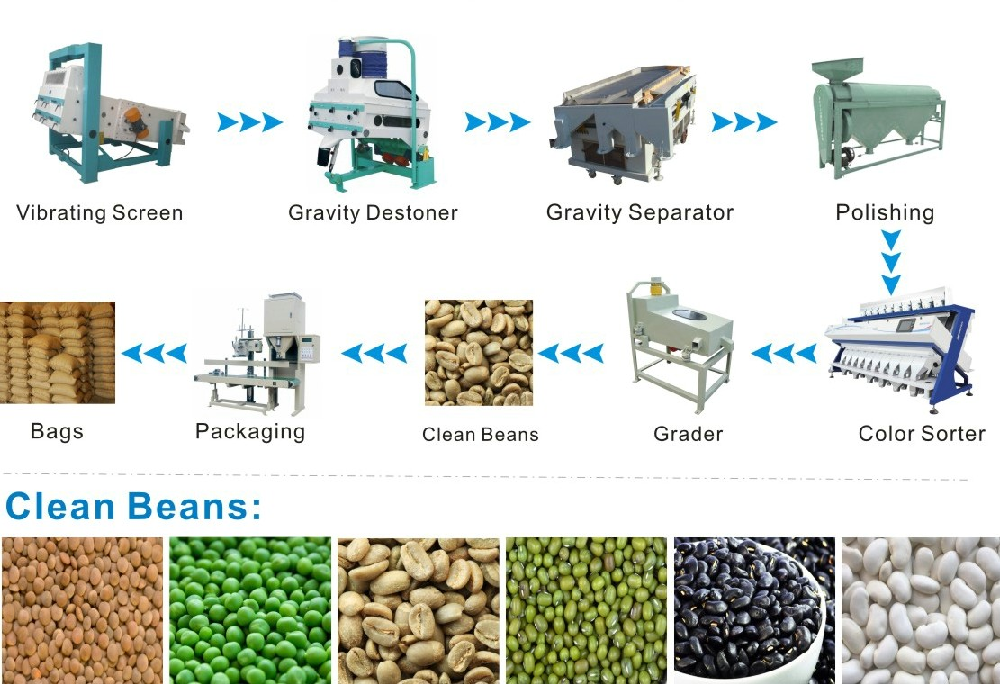 Green Coffee Bean Processing Plant አረንጓዴ ቡና ማቀነባበሪያ