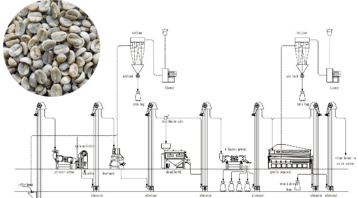 Green Coffee Bean Processing System አረንጓዴ ቡና ማቀነባበሪያ ስርዓት