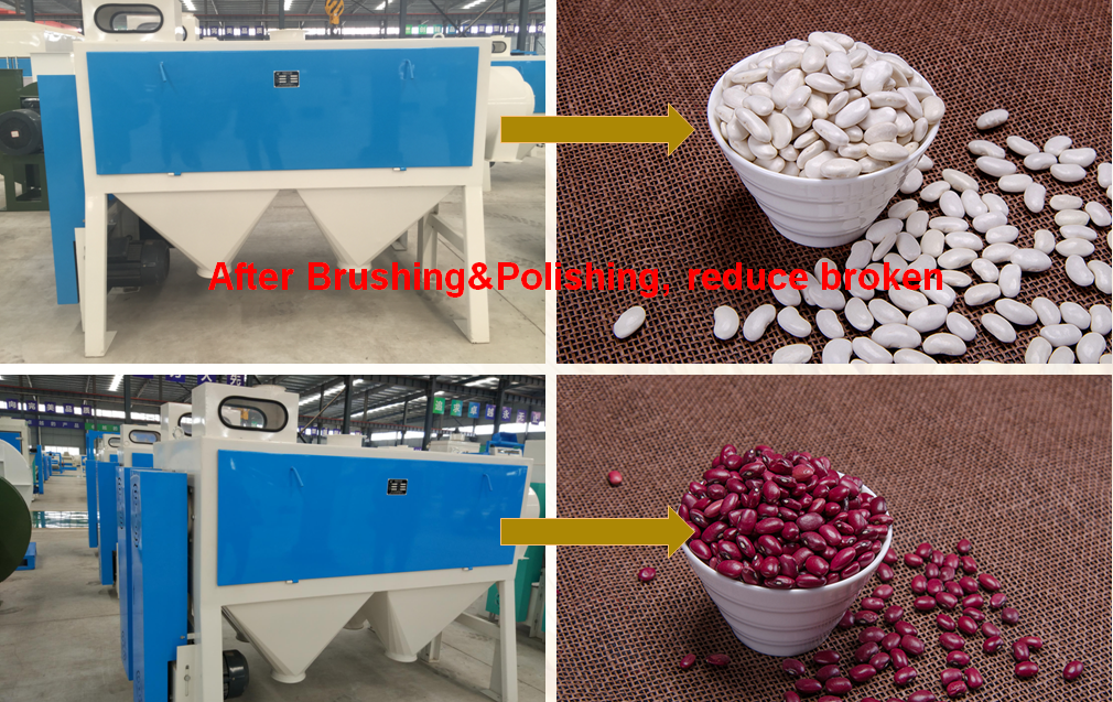 Red Kidney Bean Processing Line